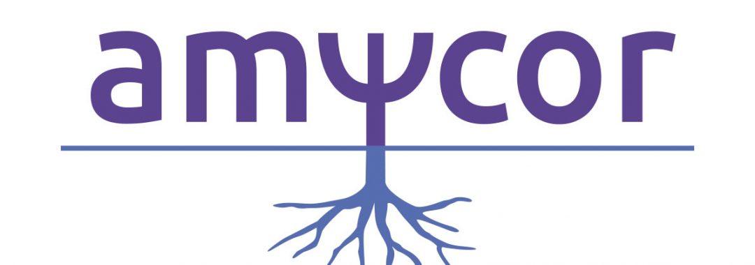 Amycor-logo